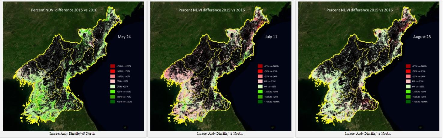 38노스가 공개한 북한의 2015, 2016년 NVDI 비교 그래픽. (좌측부터) 5월 24일, 7월 11일, 8월 28일 [사진 38노스]