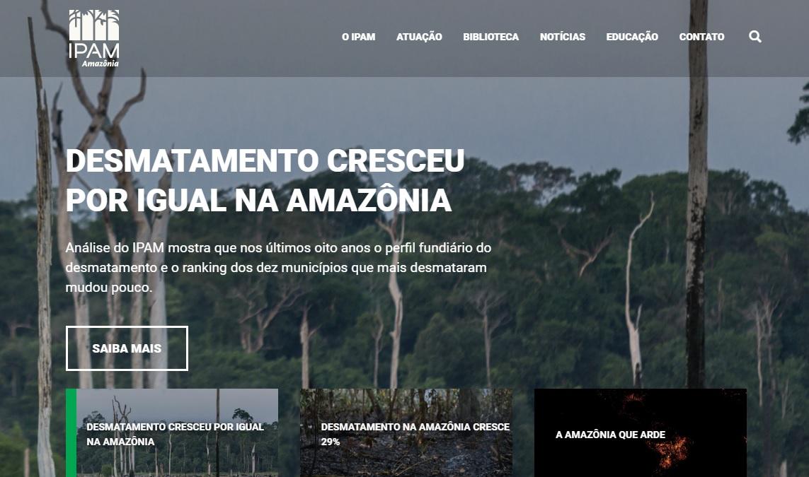 1시간에 '축구장 128개 면적'만큼 사라지는 아마존 열대우림