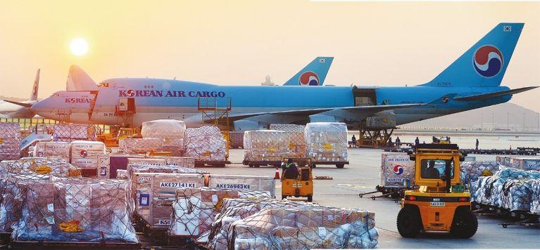 미 항공특송사가 국내 화물시장을 잠식하면서 대한항공 등 국적 항공사의 화물사업이 재편될 전망이다. 인천국제공항 대한항공 화물터미널 모습.