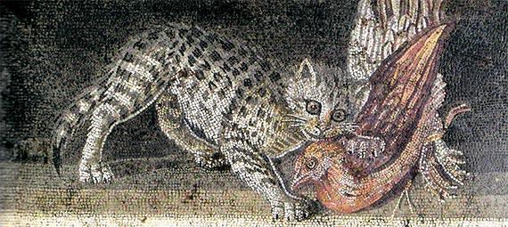 폼페이 유적의 고양이 모자이크. 폼페이 유적지에서 고양이 유해는 한 구도 발굴되지 않았지만 그리스 장인이 제작한 모자이크는 여럿 있었다. [사진 천년의상상]