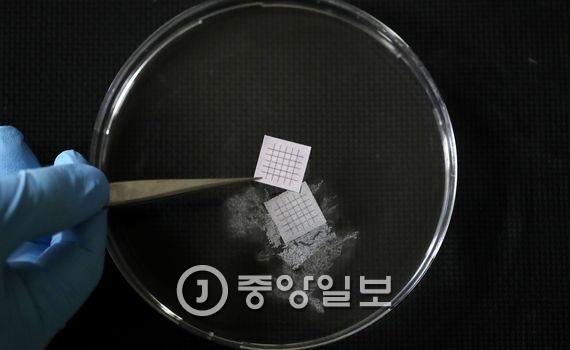 종이비누 메모리가 물에 녹는 장면 네 장을 포토샵 프로그램을 이용해 합성했다. 비누로 된 메모리를 물에 넣으면 수초 후에 서서히 녹는다.