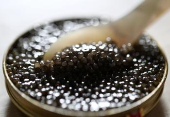 바다의 '블랙 다이아몬드' 캐비어 하나로 준비하는 홈 파티