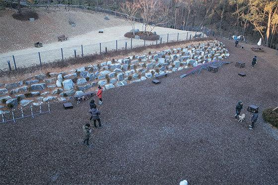 경기도 남양주시 덕소에 있는 보듬컴퍼니 반려견 교육장. 강아지 훈련을 위한 각종 시설을 갖추고 있다.