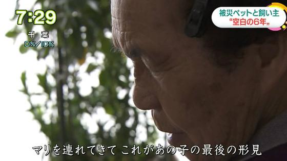 [사진 NHK]