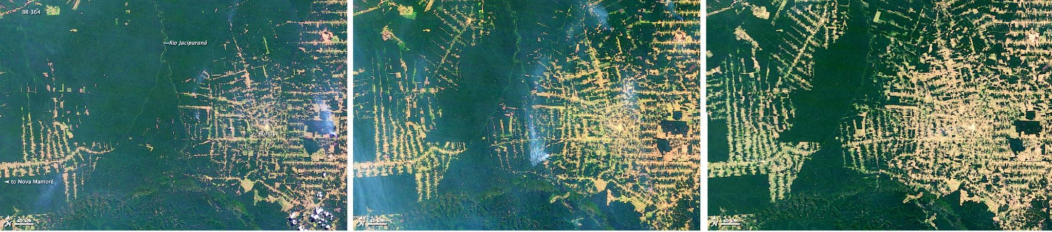 '지구의 허파 '인 아마존 열대우림의 파괴를 보여주는 위성 사진 [중앙포토]