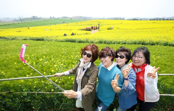 19일 전북 고창군 공음면 청보리밭. 상춘객들이 보리밭을 배경으로 사진을 찍고 있다. 프리랜서 장정필