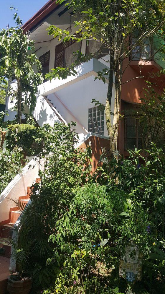 소냐스 가든에 있는 22개 오두막집 중 하나. 투숙객은 독채를 사용하기에 하룻밤만 묵어도 주인이 된다.
