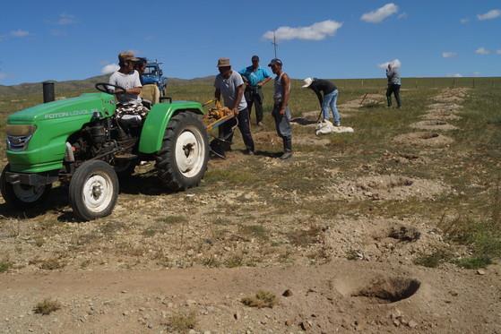 지난해 가을 첫 조림을 앞두고 몽골 아르갈란트 지역에서 주민들이 중장비를 이용해 딱딱한 사막 땅에 구덩이를 파고 있다. [중앙포토]