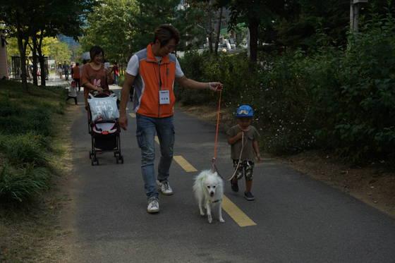 지난해 열린 서울시의 '유기견과 함께하는 행복한 산책' 행사에서 시민들이 유기견과 함께 걷고 있다. [사진 서울시]