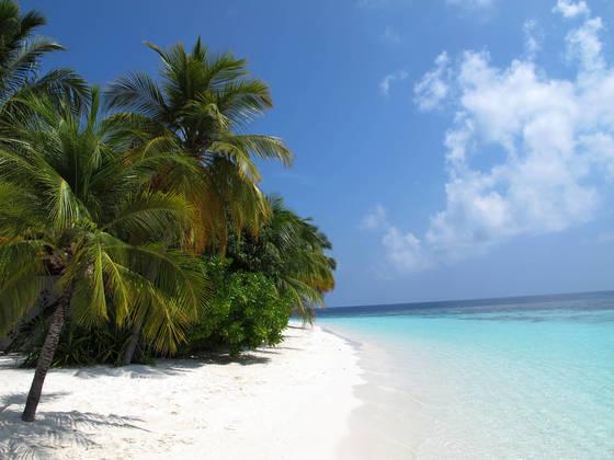 인도양에 있는 섬나라 몰디브의 해안. 약 1200개의 섬마다 리조트를 하나씩 유치해 최고의 휴식을 취할 수 있는 대표적 휴양지다, [사진=위키피디아]