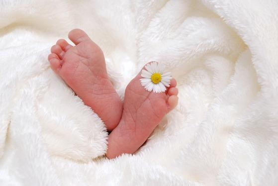 영유아는 분유를 먹으면 상대적으로 성장이 빠른 편이다. 모유 수유를 기준으로 새로 만든 정부 시안은 '성장 과잉'을 줄이는 쪽으로 방향을 잡았다. [중앙포토]
