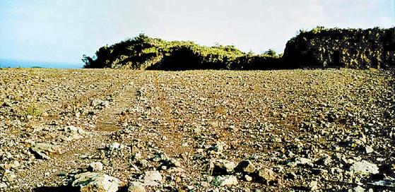 아모레퍼시픽은 1979년 녹차사업을 공표한 후 제주의 버려진 땅인 중산간 지역을 개척해서광차밭·돌송이차밭·한남차밭 등 330만5800㎡ 규모의 '오설록 유기농 다원'을 일궈냈다. 개간 전의 돌송이차밭