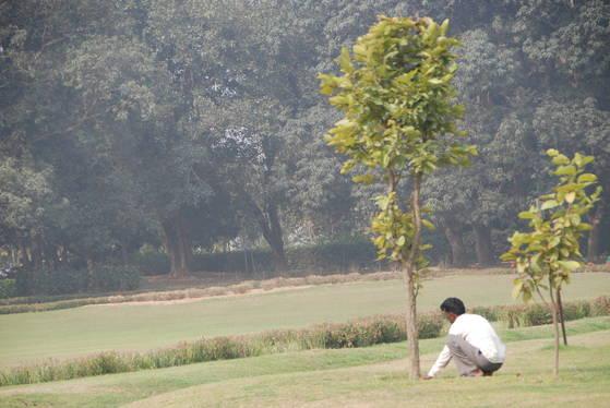 어찌 보면 공원 같고, 어찌 보면 유적지 같았다. 카필라 성터에는 울창한 나무들도 꽤 보였다.