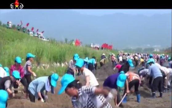 조선중앙TV는 12일 나선특별시 여맹(여성동맹)원들이 장마철 큰물에 의한 피해를 막기 위해 여맹돌격대를 만들고 7개의 강하천 정리 및 석축공사를 하고 있다고 보도했다. [사진 조선중앙TV캡처]