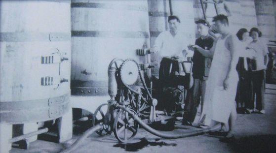 와인박물관에는 1953년 북한에서 파견한 실습생 사진도 전시돼 있다. 한복 차림의 여성이 눈에 띈다.[사진 옌타이시]