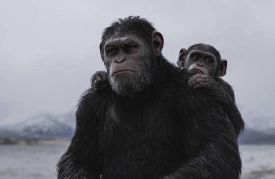 '스파이더맨:홈커밍'을 밀어내고 북미 박스오피스 1위로 데뷔한 '혹성탈출:종의 전쟁'
