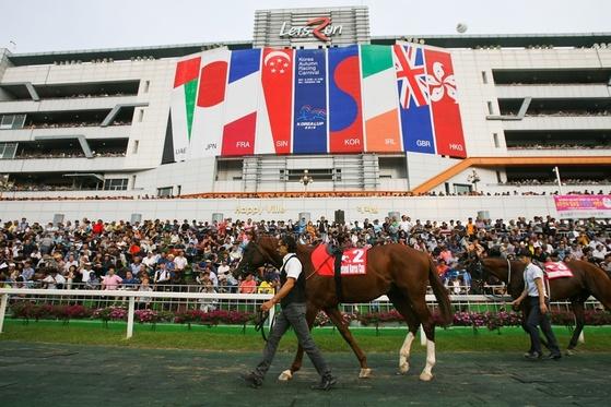 한국마사회는 경주수출을 통해 사업 다각화에 나섰다. 사진은 '코리아컵' 대회. [사진 한국마사회]