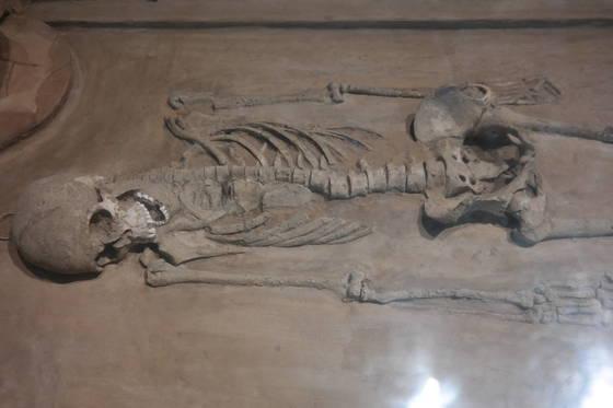 델리 박물관에서 약 2000년 전에 살았던 인도 사람의 유해를 봤다. 인간이라면 누구도 피할 수 없는 문, 그 이름은 '죽음'이다.