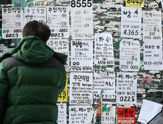 원룸 매물을 알리는 전단이 빼곡하게 붙어 있는 벽을 한 청년이 바라보고 있다.
