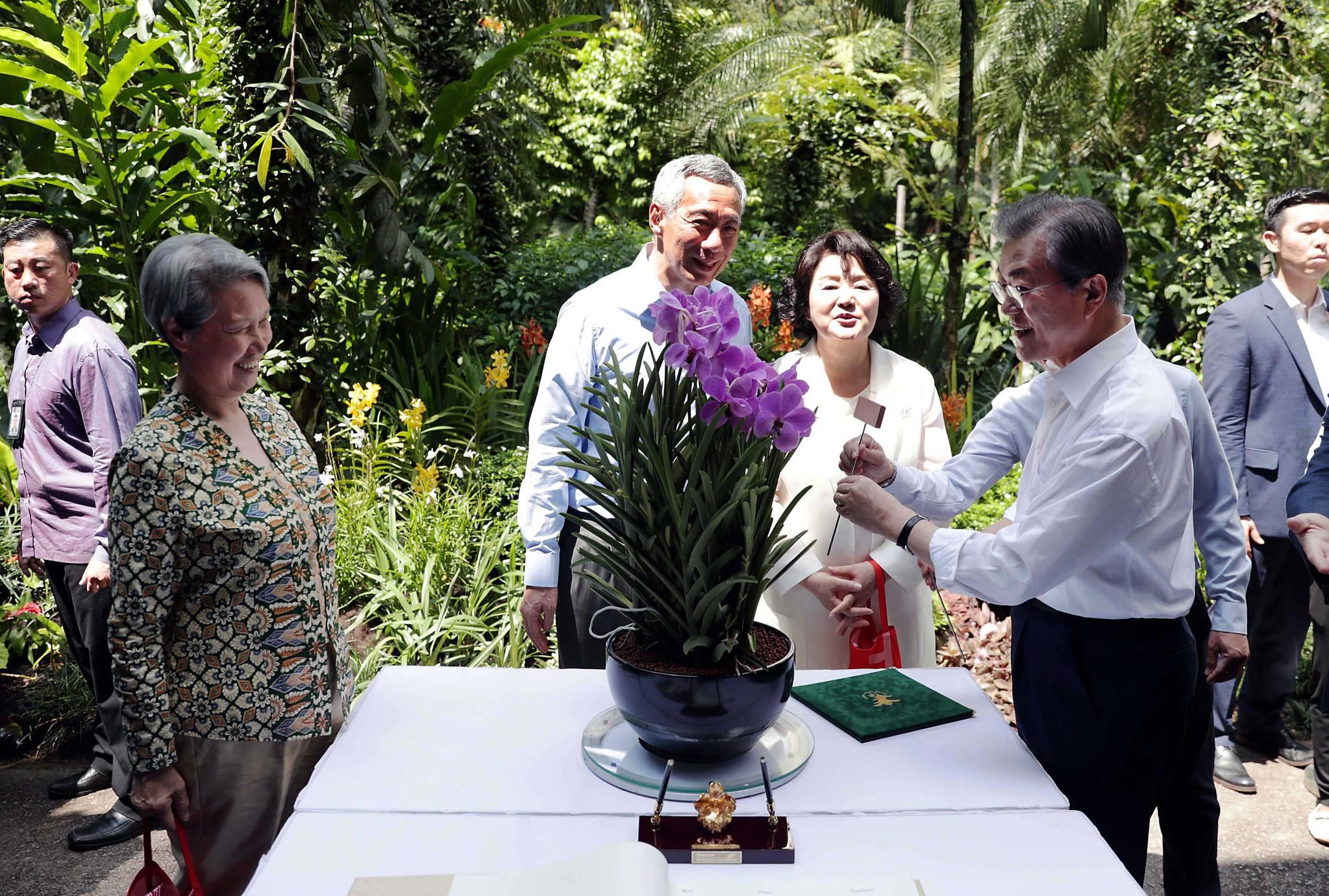 싱가포르를 국빈 방문 중인 문재인 대통령이 12일 오후(현지시간) 싱가포르 보타닉 가든에서 열린 '난초 명명식'에서 '문재인· 김정숙 난' 증명서를 받은 뒤 이름표를 꽂고 있다. 김상선 기자