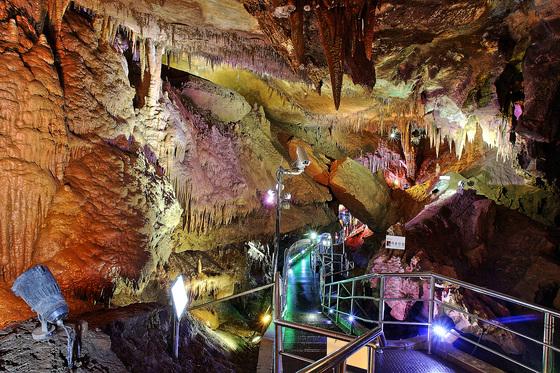 천연기념물 452호 황금박쥐가 살고 있는 천곡동굴 [사진 동해시]