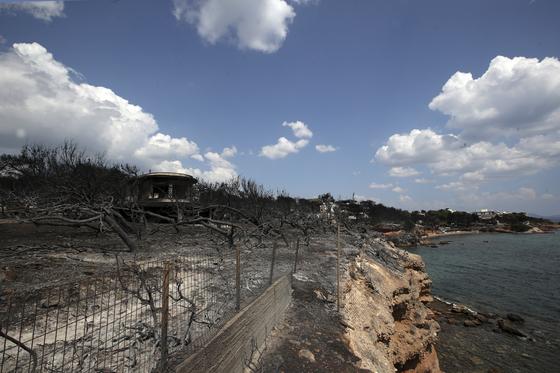 산불이 마티의 주택가쪽으로 번지면서 해안으로 달아나던 가족들이 절벽에서 껴안고 숨진 채 발견됐다. [AP=연합뉴스]