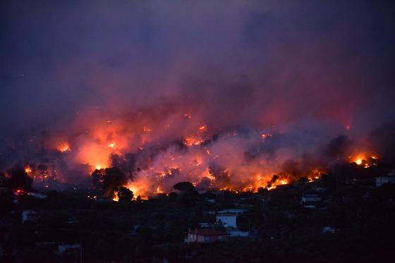 23일 그리스 아테네 라피나 지역이 불타고 있다. [AFP=연합뉴스]