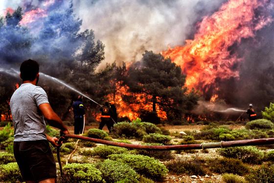 24일 한 자원봉사자가 아테네 남부 산악지대에서 소방관의 화재진압을 돕고 있다. [ EPA=연합뉴스]