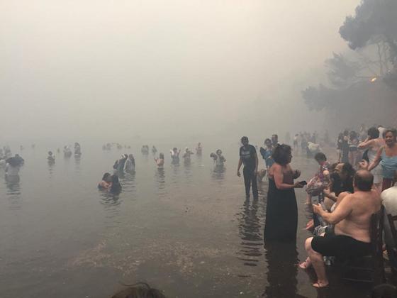 23일 산불을 피해 마티 해안까지 가까스로 탈출한 생존자들이 바닷가에 대피해 있다. [REUTER=연합뉴스]