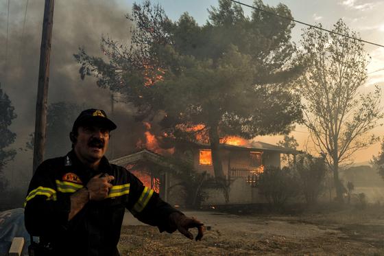 그리스 화재 희생자는 28일(현지시간) 현재 88명으로 늘었다. [AFP=연합뉴스]