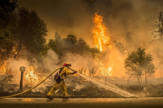 미국 캘리포니아에서는 40도가 넘는 고온과 시속 50km의 강풍 속에 산불이 계속 번져 지난 28일(현지시간)까지 서울시 면적의 절반에 해당하는 323㎢의 산림과 시가지를 태웠다. [AP=연합뉴스]