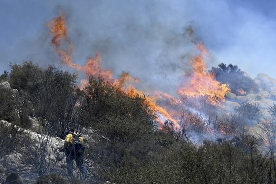 새스타 카운티에서 자동차 화재로 촉발된 이번 화재는 새크라멘토 강을 건너 확산됐다. [AP=연합뉴스]