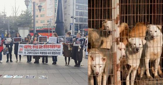 동물수호친구들 등 동물보호 단체들이 지난해 12월 서울 종로구 인사동 북인사마당에서 개 식용 금지를 촉구하는 성명을 발표하고 있다. [연합뉴스]