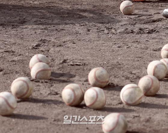 수도권 유명 선수 한화에 이어 … 야구계 '해피 미투'확산