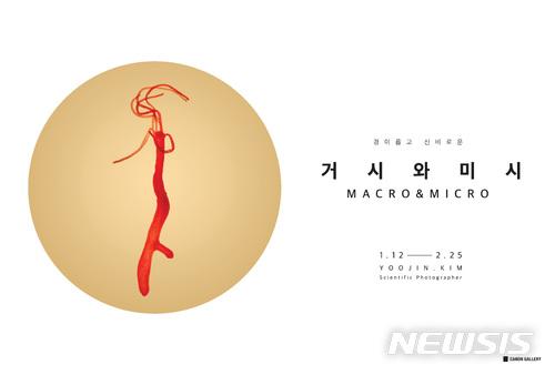 [산업단신]캐논코리아컨슈머이미징, '거시와 미시' 과학사진전 개최 外