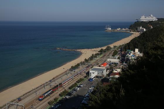 짙푸른 동해바다와 정동진역, 그리고 무궁화호 열차. [사진 박준규]