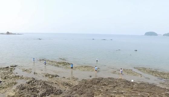 보령해경 수사관들이 익사사고가 발생한 충남 서천의 한 바닷가에서 모의실험을 하고 있다. [사진 보령해경]