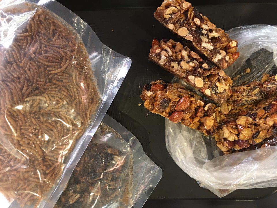 건국대 식용곤충 동아리 'KEIRO' 학생들이 연구하는 다양한 식용곤충 식품. 왼쪽부터 밀웜, 귀뚜라미, 귀뚜라미 가루를 이용해 만든 에너지 바. [연합뉴스]