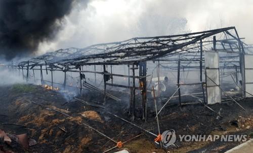 불에 탄 익산 양계장. [연합뉴스]