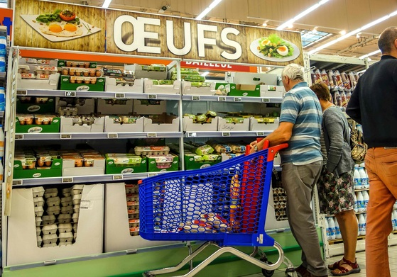 """프랑스 북부 도시 릴의 한 슈퍼마켓에 있는 계란 판매대 앞에서 쇼핑객들이 계란을 고르고 있다. 계란에서 살충제 필프로닐 성분이 검출되면서 유럽 각국이 비상에 걸렸다. 프랑스 농업부는 """"지난 4월 이후 살충제에 오염된 계란 25만 개가 프랑스에서 유통됐으며, 인체에 미치는 위험은 매우 적다""""고 밝혔다. [릴 AFP=연합뉴스]"""