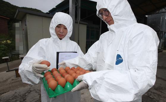 경남 양산시 상북면 한 산란계 사육농장에서 15일 경남축산진흥연구원 직원들이 살충제 성분 유무를 검사할 계란 표본을 들고 나오고 있다.송봉근 기자