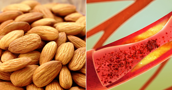 아몬드가 피 속 좋은 콜레스테롤을 늘려 혈액을 건강하게 하는 데 큰 도움을 주는 것으로 밝혀졌다. [중앙포토]