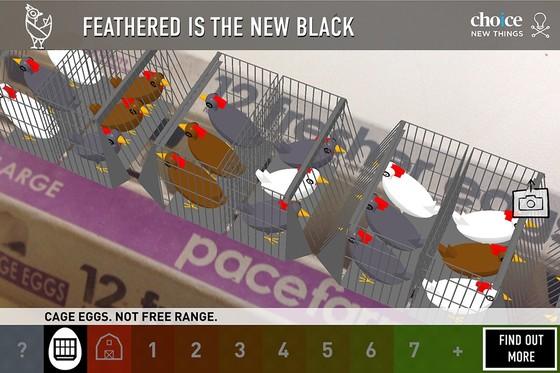 어떤 방식으로 자란 닭에서 얻은 계란인지 소비자들이 확인할 수 있는 앱. 계란 포장지에 스마트폰을 비추면 사육 방식이 나타난다. 이 계란은 닭장에서 밀집사육 방식으로 수확했다. [사진 초이스]