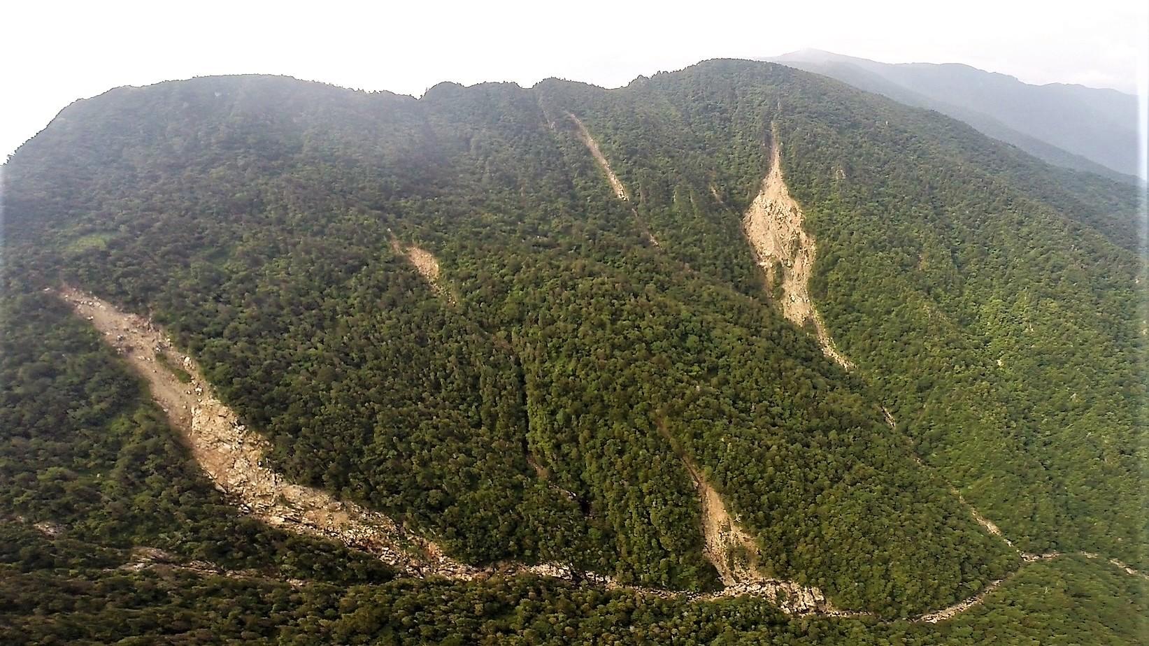 지리산 천왕봉 주변에 발생한 산사태 모습 [사진 녹색연합]