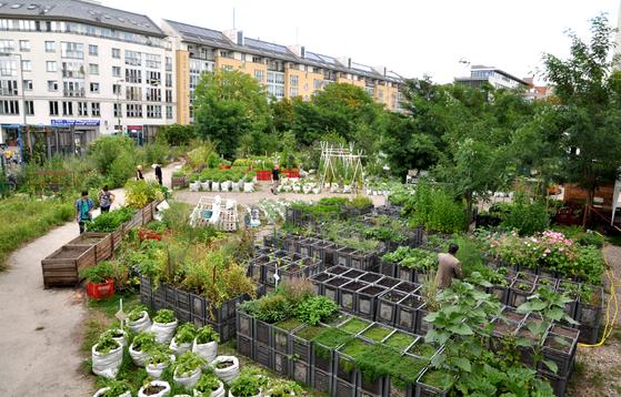 독일 베를린시에 있는 '공주의 정원'은 도심 한복판의 버려진 공터를 농장으로 변신시켜 관광 명소가 됐다. [사진 '공주의 정원' 홈페이지]