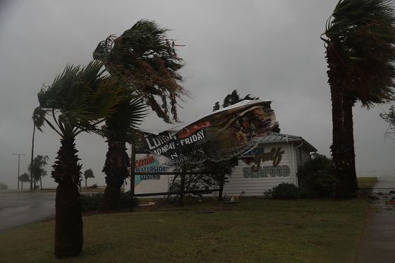 25일(현지시간) 12년 만에 미국 본토에 상륙한 가장 강력한 허리케인 '하비'의 영향으로 텍사스 주의 한 업체의 간판이 찢어졌다. [AFP=연합뉴스]