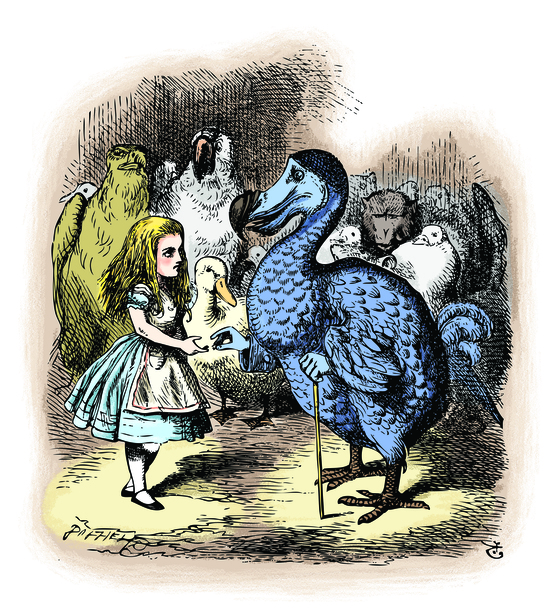 '이상한 나라의 앨리스 추리파일'(보누스) 중에서.Alice in Wonderland. Alice and the Dodo. Then they all crowded round her once more, while the Dodo solemnly presented the thimble.Alice's Adventures in Wonderland. Illustration from John Tenniel, published in 1865.