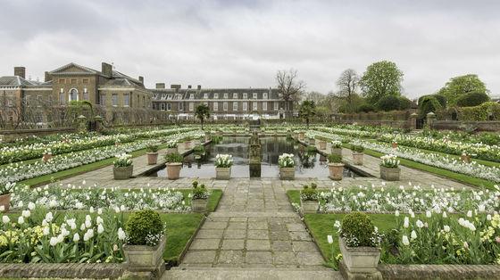 고 다이애나 왕세자비를 기리기 위해 거처였던 런던 켄싱턴궁 안에 조성된 하얀 정원.