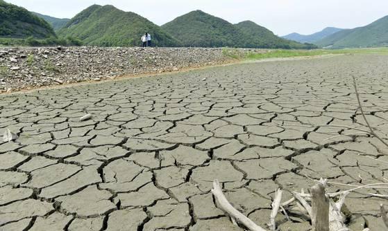 지난 5월 극심한 가뭄으로 바닥을 드러낸 충남 보령댐. 지난 2015년 가을에 이어 올해도 충남 지역에 물을 공급하는 보령댐이 말라붙었다. [중앙포토]