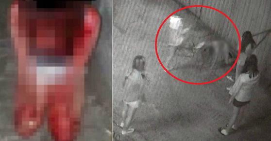 부산 여중생 폭행 사건 피해자(왼쪽)와 CCTV에 포착된 폭행 장면. [연합뉴스]